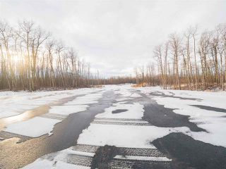 Photo 11: 50367 RR 222: Rural Leduc County Rural Land/Vacant Lot for sale : MLS®# E4136244