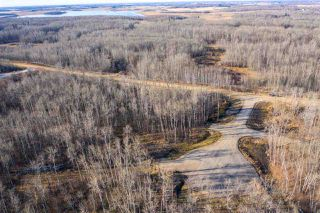 Photo 4: 50367 RR 222: Rural Leduc County Rural Land/Vacant Lot for sale : MLS®# E4136244