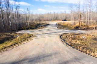 Photo 7: 50367 RR 222: Rural Leduc County Rural Land/Vacant Lot for sale : MLS®# E4136244