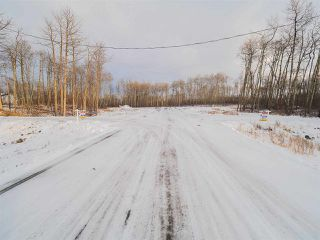 Photo 17: 50367 RR 222: Rural Leduc County Rural Land/Vacant Lot for sale : MLS®# E4136244