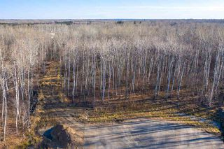 Photo 3: 50367 RR 222: Rural Leduc County Rural Land/Vacant Lot for sale : MLS®# E4136244