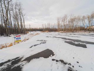 Photo 16: 50367 RR 222: Rural Leduc County Rural Land/Vacant Lot for sale : MLS®# E4136244