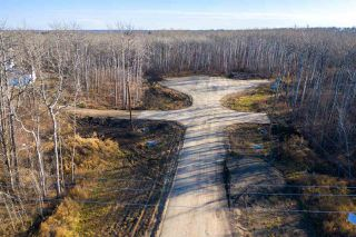 Photo 10: 50367 RR 222: Rural Leduc County Rural Land/Vacant Lot for sale : MLS®# E4136244