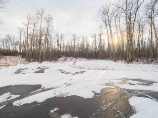 Photo 14: 50367 RR 222: Rural Leduc County Rural Land/Vacant Lot for sale : MLS®# E4136244