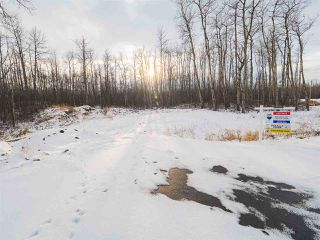 Photo 15: 50367 RR 222: Rural Leduc County Rural Land/Vacant Lot for sale : MLS®# E4136244