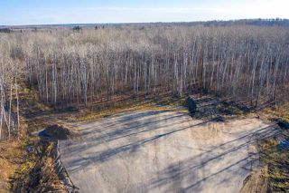 Photo 9: 50367 RR 222: Rural Leduc County Rural Land/Vacant Lot for sale : MLS®# E4136244