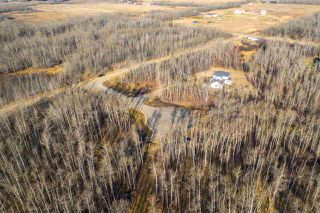 Photo 6: 50367 RR 222: Rural Leduc County Rural Land/Vacant Lot for sale : MLS®# E4136244