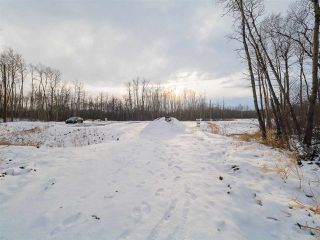Photo 13: 50367 RR 222: Rural Leduc County Rural Land/Vacant Lot for sale : MLS®# E4136244
