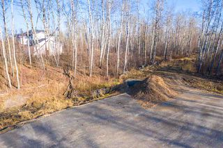 Photo 8: 50367 RR 222: Rural Leduc County Rural Land/Vacant Lot for sale : MLS®# E4136244