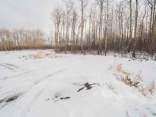 Photo 18: 50367 RR 222: Rural Leduc County Rural Land/Vacant Lot for sale : MLS®# E4136244