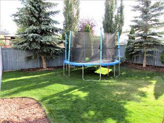 Photo 23: 816 113A Street in Edmonton: Zone 16 House for sale : MLS®# E4139972
