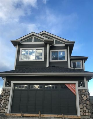 Main Photo: 8121 222a Street in Edmonton: Zone 58 House for sale : MLS®# E4144280