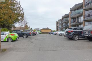 Photo 15: 107 1870 McKenzie Avenue in VICTORIA: SE Lambrick Park Condo Apartment for sale (Saanich East)  : MLS®# 406139