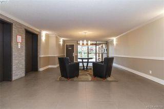 Photo 3: 107 1870 McKenzie Avenue in VICTORIA: SE Lambrick Park Condo Apartment for sale (Saanich East)  : MLS®# 406139