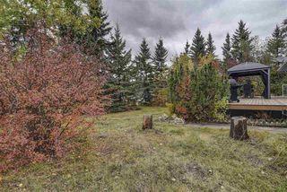 Photo 20: 29 SHULTZ Drive: Rural Sturgeon County House for sale : MLS®# E4146942