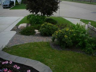 Photo 29: 11805 10A Avenue in Edmonton: Zone 16 House for sale : MLS®# E4149948