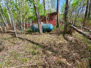 Photo 8: 26417 TWP RD 512: Rural Parkland County Rural Land/Vacant Lot for sale : MLS®# E4158130