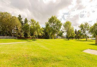 Photo 26: 14831B RIVERBEND Road in Edmonton: Zone 14 Townhouse for sale : MLS®# E4171251