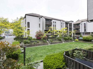 "Photo 4: 15 365 GINGER Drive in New Westminster: Fraserview NW Townhouse for sale in ""Fraser Mews"" : MLS®# R2458131"