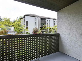 "Photo 21: 15 365 GINGER Drive in New Westminster: Fraserview NW Townhouse for sale in ""Fraser Mews"" : MLS®# R2458131"