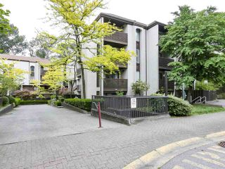 "Photo 1: 15 365 GINGER Drive in New Westminster: Fraserview NW Townhouse for sale in ""Fraser Mews"" : MLS®# R2458131"