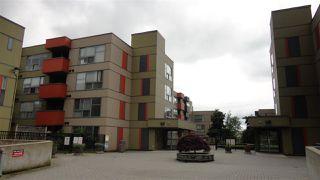 "Main Photo: 104 12075 228 Street in Maple Ridge: East Central Condo for sale in ""RIO"" : MLS®# R2467006"