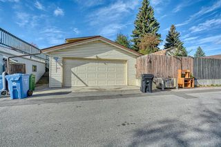 Photo 14: 4312 49 Street NE in Calgary: Whitehorn Detached for sale : MLS®# A1042688