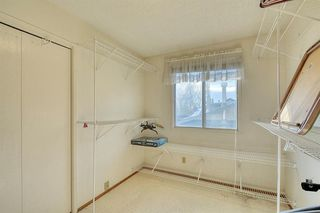 Photo 10: 4312 49 Street NE in Calgary: Whitehorn Detached for sale : MLS®# A1042688