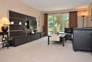 Photo 2: 112 13530 HILTON Road in Surrey: Bolivar Heights Condo for sale (North Surrey)  : MLS®# F1221645