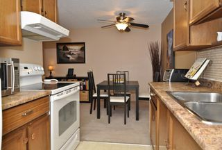 Photo 9: 112 13530 HILTON Road in Surrey: Bolivar Heights Condo for sale (North Surrey)  : MLS®# F1221645