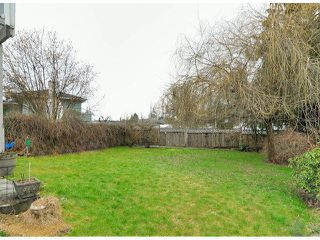 Photo 17: 21695 EXETER Avenue in Maple Ridge: West Central House for sale : MLS®# V1046694