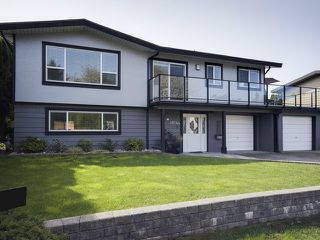 Photo 1: 19744 115A Avenue in Pitt Meadows: South Meadows House for sale : MLS®# V1118317
