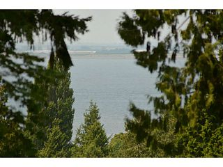 Photo 17: 12353 CEDAR Drive in Surrey: Crescent Bch Ocean Pk. House for sale (South Surrey White Rock)  : MLS®# F1446162
