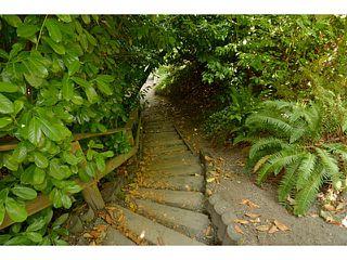 Photo 20: 12353 CEDAR Drive in Surrey: Crescent Bch Ocean Pk. House for sale (South Surrey White Rock)  : MLS®# F1446162