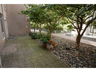 """Photo 10: 101 2638 ASH Street in Vancouver: Fairview VW Condo for sale in """"CAMBRIDGE GARDENS"""" (Vancouver West)  : MLS®# V1137698"""