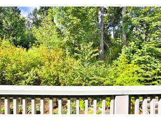 """Photo 16: 3383 145A Street in Surrey: Elgin Chantrell House for sale in """"Sandpiper Crescent"""" (South Surrey White Rock)  : MLS®# F1450330"""