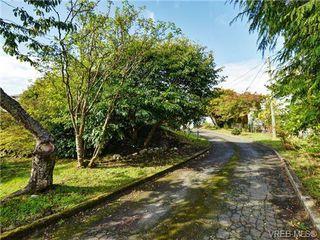 Photo 19: 318 Clifton Terrace in VICTORIA: Es Saxe Point Single Family Detached for sale (Esquimalt)  : MLS®# 357253