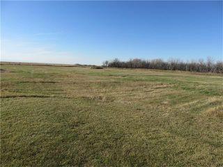 Photo 23: 174004 Range road 245: Rural Vulcan County House for sale : MLS®# C4036542