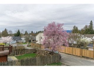 Photo 20: 23375 124 Avenue in Maple Ridge: East Central House for sale : MLS®# R2048658