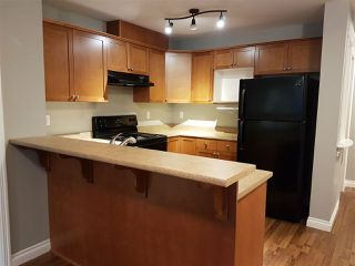 "Photo 2: 213 8955 EDWARD Street in Chilliwack: Chilliwack W Young-Well Condo for sale in ""WESTGATE"" : MLS®# R2124698"