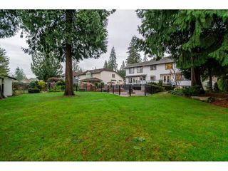 "Photo 17: 20867 YEOMANS Crescent in Langley: Walnut Grove House for sale in ""YEOMANS CRES - WALNUT GROVE"" : MLS®# R2133908"