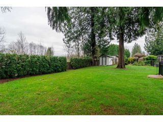 "Photo 18: 20867 YEOMANS Crescent in Langley: Walnut Grove House for sale in ""YEOMANS CRES - WALNUT GROVE"" : MLS®# R2133908"
