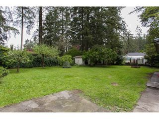 Photo 18: 3660 207B Street in Langley: Brookswood Langley House for sale : MLS®# R2164711