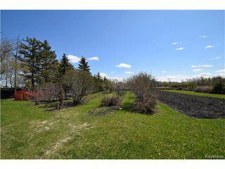 Photo 20: 2991 McPhillips Street in Winnipeg: Old Kildonan Residential for sale (4F)  : MLS®# 1711994
