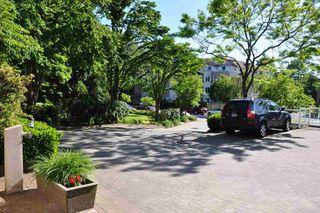 "Photo 20: 216 2678 DIXON Street in Port Coquitlam: Central Pt Coquitlam Condo for sale in ""Springdale"" : MLS®# R2180959"