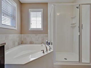 Photo 40: 353 SILVERADO Boulevard SW in Calgary: Silverado House for sale : MLS®# C4125629