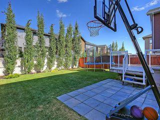 Photo 43: 353 SILVERADO Boulevard SW in Calgary: Silverado House for sale : MLS®# C4125629