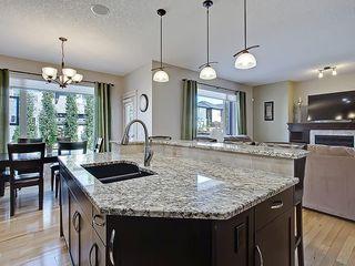 Photo 14: 353 SILVERADO Boulevard SW in Calgary: Silverado House for sale : MLS®# C4125629