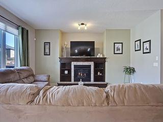 Photo 19: 353 SILVERADO Boulevard SW in Calgary: Silverado House for sale : MLS®# C4125629