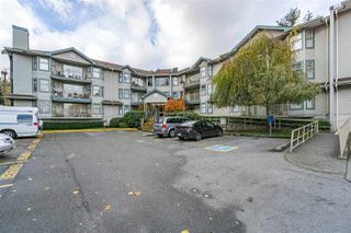 Photo 1: 204 10743 139 STREET in Surrey: Whalley Condo for sale (North Surrey)  : MLS®# R2222136
